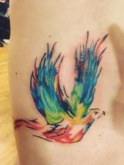男子侧肋上漂亮的水彩飞鸟纹身图片