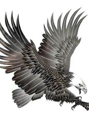 扑击的雄鹰纹身手稿图