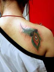 女性背部孔雀羽毛纹身图片