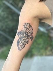 手大臂上的黑灰色真实心脏和大脑纹身图片
