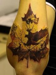 手臂枫叶老鹰彩色纹身图片