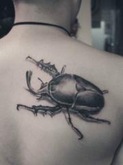 男性背部经典流行的独角仙昆虫纹身