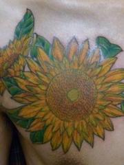 男性胸部个性向日葵纹身图案