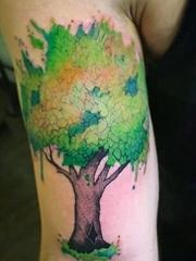 春天里小清新植物纹身小花朵和动物纹身水彩图案