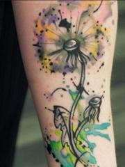 女性身上多种风格的蒲公英纹身动物图案纹身
