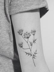 女生喜爱的黑色小清新植物纹身
