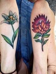 手臂上彩色花朵纹身山龙眼花和雪绒花植物纹身图片