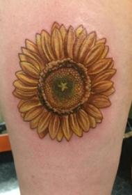 女生腿部渐变色向日葵纹身图片