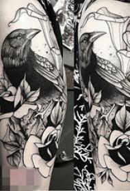 手臂黑白灰风格点刺鸟植物素材花朵简单线条纹身图片