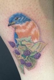 小腿上彩绘技巧植物素材叶子鸟纹身动物图片