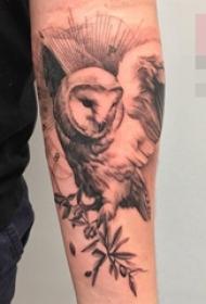 手臂上点刺技巧植物素材猫头鹰动物纹身图片