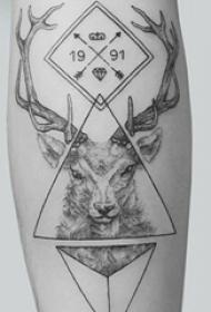 一组黑白灰风格关于植物和动物的个性纹身图案