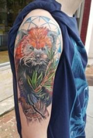 手臂上彩绘技巧几何元素植物素材和小动物纹身图片
