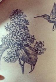 女生腰侧黑灰色简约线条花朵与蜂鸟纹身图片