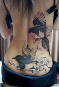 一组女生腰上创意个性唯美纹身图案