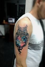 男生手臂上彩绘猫头鹰创意个性纹身图片