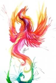 彩色的水彩泼墨火凤凰纹身手稿