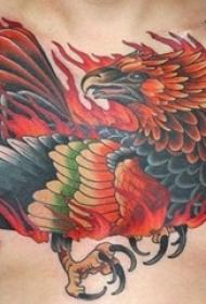 男生胸口上彩绘水彩霸气凤凰纹身图片