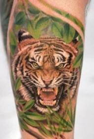 霸气侧漏的彩绘动物简单个性线条老虎头纹身图案