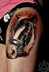 多款创意个性的设计感十足的动物马纹身图案