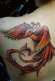 女生背部彩绘水彩创意个性红色展翅凤凰纹身图片