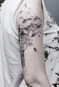 女生手臂上黑灰点刺植物大树纹身图片