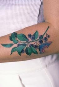 女生手臂上彩绘清新植物与蝴蝶纹身图片