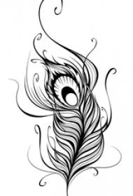 黑灰素描创意唯美唯美羽毛纹身手稿
