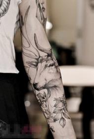 女生手臂上黑灰点刺植物和小动物麋鹿纹身图片