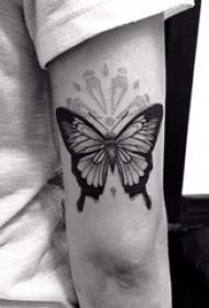 男生手臂上黑色写实小动物蝴蝶纹身图片