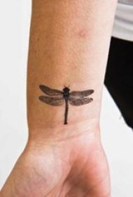 男生手腕上黑色点刺小动物蜻蜓纹身图片