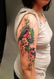 女生手臂上彩绘植物花朵和小鸟纹身图片