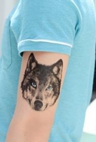 男生手臂上黑色点刺凶残小动物狼纹身图片