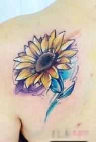 女生背部彩绘水彩素描唯美向日葵纹身图片