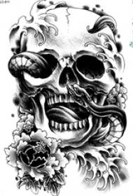 黑灰素描创意蛇和骷髅创意骷髅花朵纹身手稿