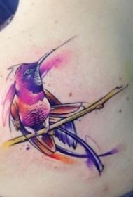 女生肩部彩绘抽象线条小动物蜂鸟纹身图片