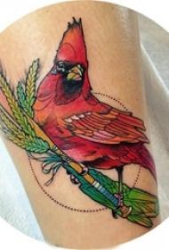 女生小腿上彩绘植物叶子和小鸟纹身图片