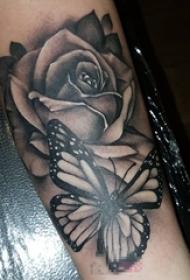 女生手臂上黑灰素描点刺技巧文艺蝴蝶和玫瑰纹身图片