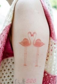 女生手臂上彩绘水彩素描创意千顶鹤纹身图片