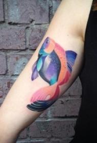 女生手臂上彩绘渐变小动物鱼创意纹身图片