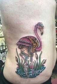 男生侧腰上彩绘简单线条植物和小动物火烈鸟纹身图片