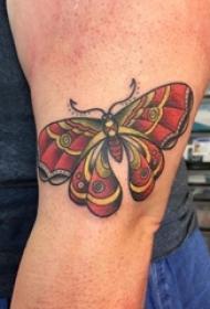 女生手臂上彩绘水彩素描创意文艺唯美花纹蝴蝶纹身图片