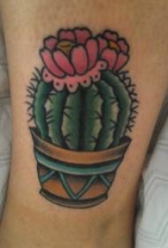 男生线条上彩绘几何线条植物花朵仙人掌纹身图片
