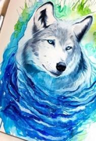 彩绘水彩素描泼墨创意狼头纹身手稿