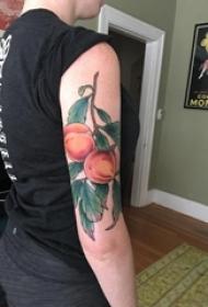 男生手臂上彩绘渐变简单线条植物叶子和桃子纹身图片