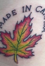 男生手臂上彩绘渐变英文单词和植物枫叶纹身图片