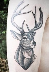 男生手臂上黑色点刺简单线条可爱小动物鹿纹身图片