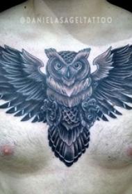 男生胸口上黑灰素描点刺技巧创意霸气猫头鹰纹身图片