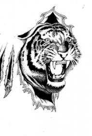 黑灰素描描绘的创意霸气老虎纹身手稿