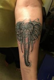 男生手臂上黑灰素描点刺技巧创意精美大象纹身